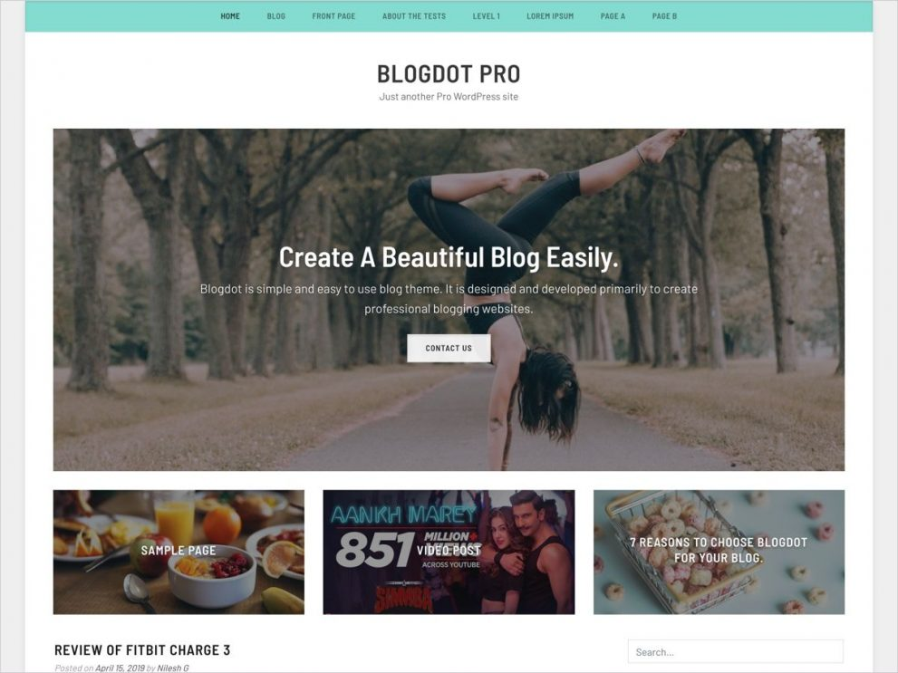 Blogdot Premium WordPress blog theme